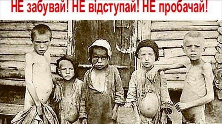 Хатаєвич, Каганович, Ягода –Фаріон нагадала послу Ізраїлю хто здійснив Голодомор українців
