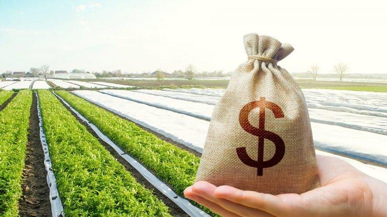 На Полтавщині 1 гектар сільгоспугідь коштує понад 30 тисяч гривень