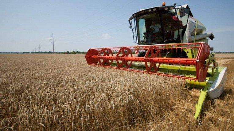 Аграрії Полтавщини намолотили понад 950 тисяч тонн зерна нового врожаю