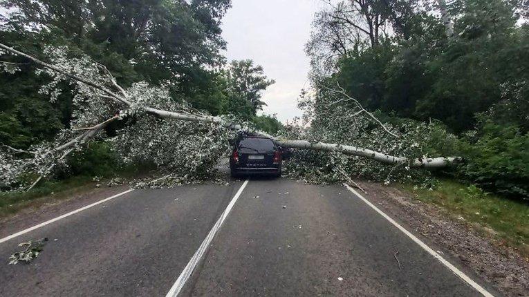 У Миргородському районі буревій завдав шкоди автотранспорту