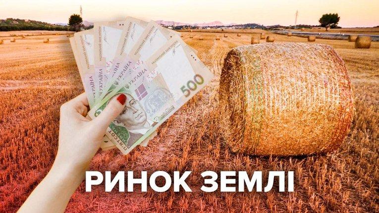 У Полтавській області продали 3 253,8 гектарів землі