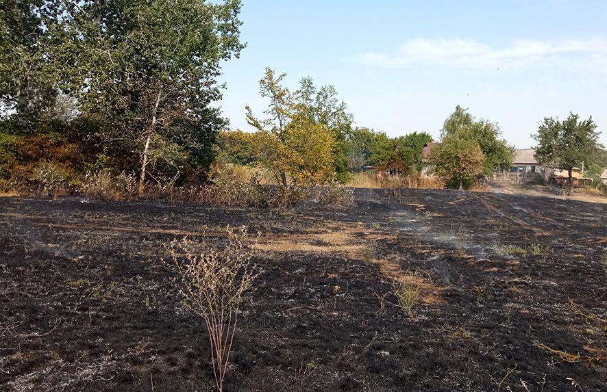 У Кобеляках від займання сухої трави ледь не спалахнули житлові будинки